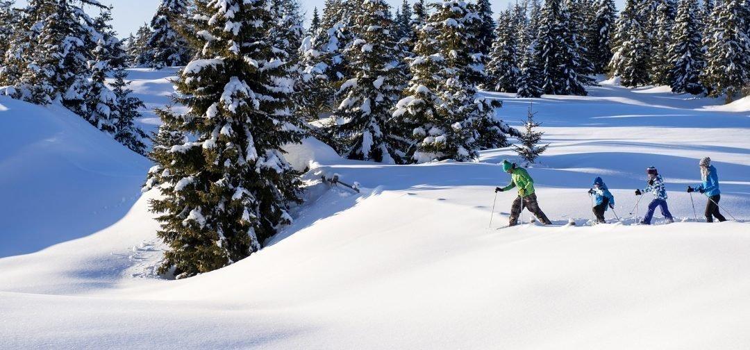 Skiing & Winter pleasures